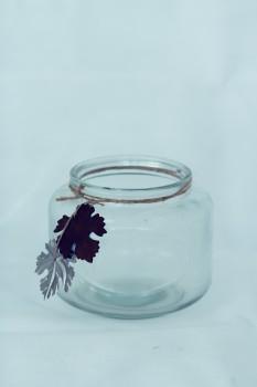 Dijk Natural Collections Glas Windlicht / Vase klein